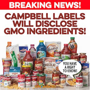 Breaking News! Campbell's labels will disclose GMO ingredients!