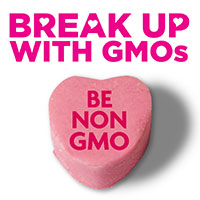 break up with GMOs - be non-GMO