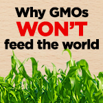 why GMOs won't feed the world