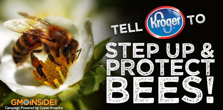 Tell Kroger to step up and protect bees!