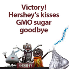 Victory! Hershey to go non-GMO